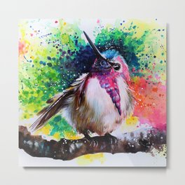 Costa's Hummingbird Acrylic Painting Metal Print