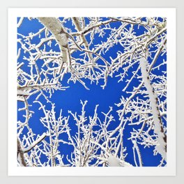 Bright Winter Blues Art Print