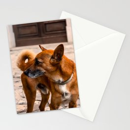 The Orange Dog Stationery Cards
