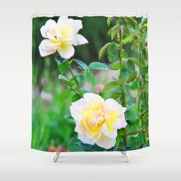 Yellow Rose Shower Curtain