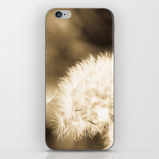 Dandelion Breeze iPhone & iPod Skin