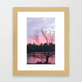 CAROLINA SUN SET Framed Art Print