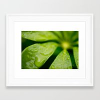 jamaica Framed Art Prints featuring Jamaica Greenery by Heartland Photography By SJW