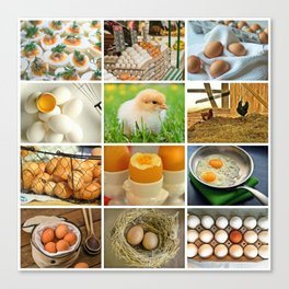 Chicken Eggs Collage Kitchen Decor Canvas Print