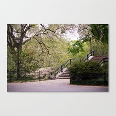 Spring in Central Park. Canvas Print