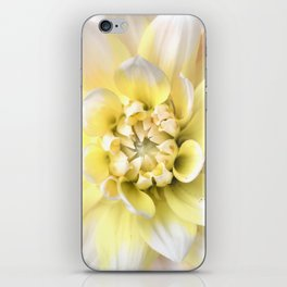 Dahlia in Bloom iPhone Skin