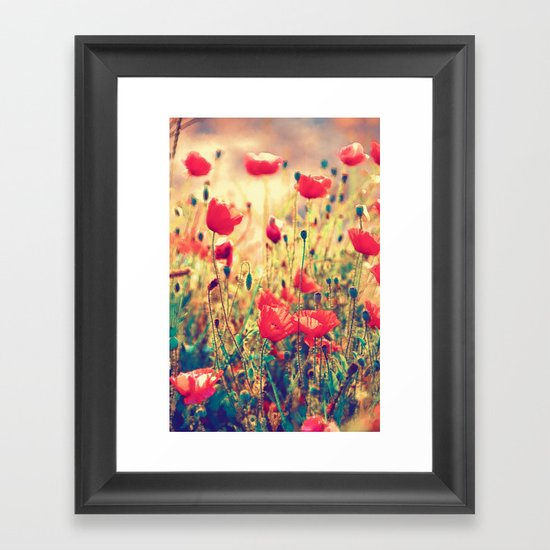 Morning Light - Poppy Field Framed Art Print
