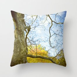 Oak Run Throw Pillow