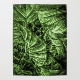 Painted Green Monstera palm leaves by Brian Vegas Poster