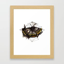 The moth's path Framed Art Print