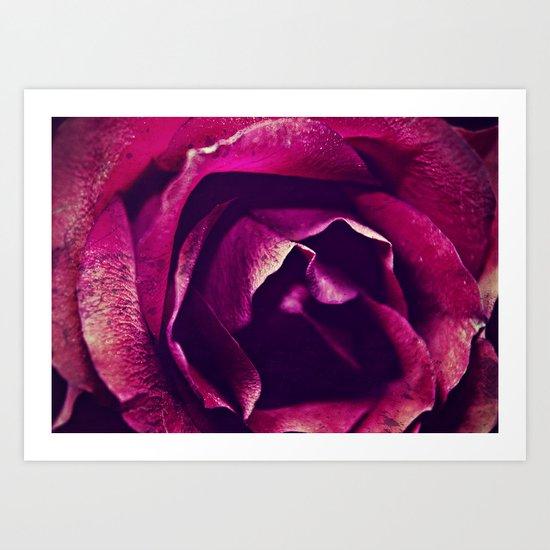 name of the rose Art Print