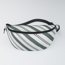 Night Watch PPG1145-7 Thick and Thin Angled Stripes on Delicate White PPG1001-1 Fanny Pack