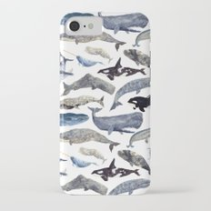 Whale Song Slim Case iPhone 7