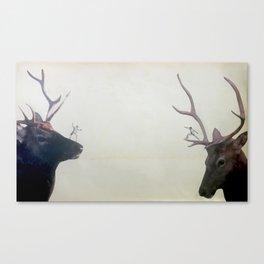Head to Head Canvas Print