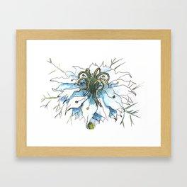 Nigella watercolor beautiful flower, nature Framed Art Print