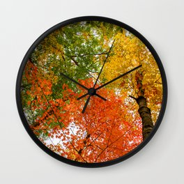 Colorful autumn forest Wall Clock