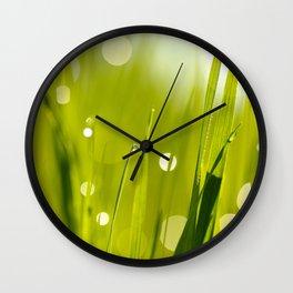 Wonderful Morning Dew Wall Clock