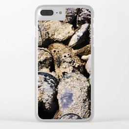 Many mussels Clear iPhone Case