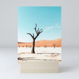 Deadvlei / Sossusvlei - Namibia - Travel photo & landscapes Mini Art Print