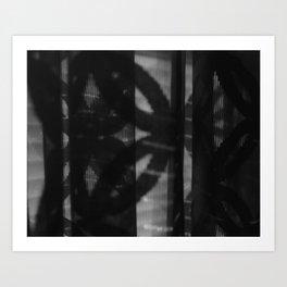 Untitled 2012 Art Print