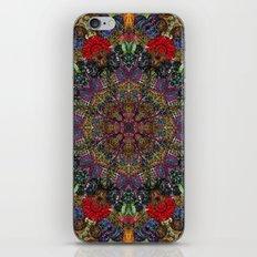 Hallucination Mandala 3 iPhone & iPod Skin