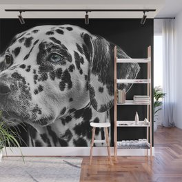 Dalmatian with One Blue Eye Portrait Photograph Wall Mural