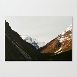 Years and Years III Canvas Print