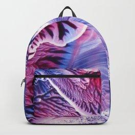 Glacial Wall Backpack