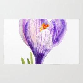 Delicate spring flower of crocus Rug
