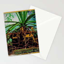 FAVORITE GREEN AGAVE & ROOTS GREENHOUSE  PHOTO Stationery Cards