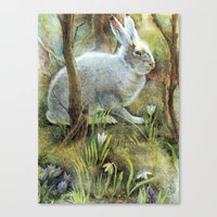 hare Canvas Prints featuring Hare by Natalie Berman