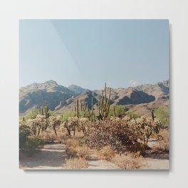 Sabino Canyon Metal Print
