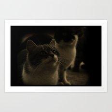 Kitty Katz Art Print