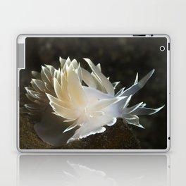 Alabaster Nudibranch Laptop & iPad Skin