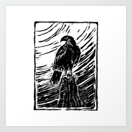 Harris Hawk Woodcut Art Print