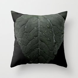 Botanical Still Life Photography Drops On Leaf Throw Pillow
