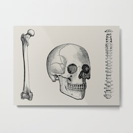 Illustrated and priced catalogue of superior surgical instruments Skull Sapine Ink Illustration Metal Print