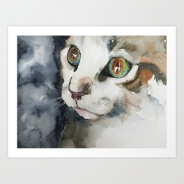 cat#13 Art Print