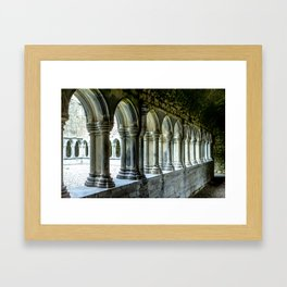 Askeaton Castle Cloisters Framed Art Print