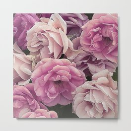 Great Garden Roses pink Metal Print