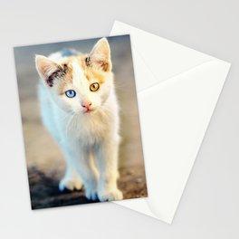 Orange And Blue Stationery Cards