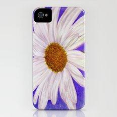 Shasta Daisy iPhone (4, 4s) Slim Case