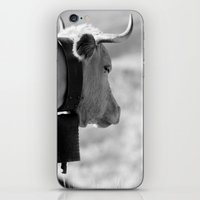 cow iPhone & iPod Skins featuring Cow by Crazy Thoom