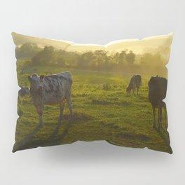 Cows at Sunset Pillow Sham