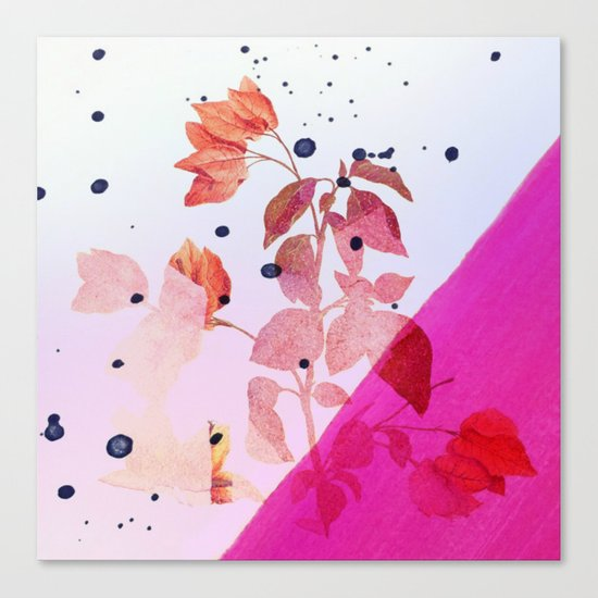 modern bougainvillea Canvas Print