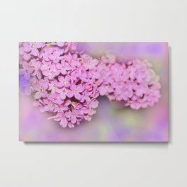 the beauty of a summerday -30- Metal Print