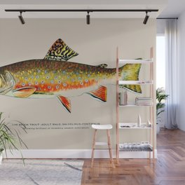 Brook Trout Wall Mural