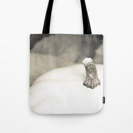 Calabaza blanca Tote Bag