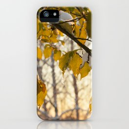trees under snow iPhone Case