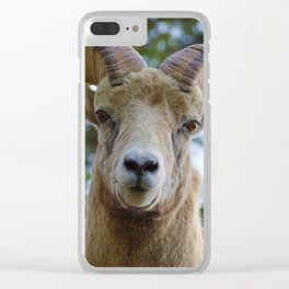Natures best starring contest Clear iPhone Case